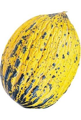 Tohum Diyarı Kavun (Kırkağaç) Tohumu 5+ Tohum