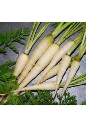 Tohum Diyarı Organik Beyaz Havuç Tohumu 10+ Tohum