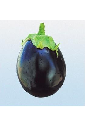 Tohum Diyarı Tombul Patlıcan Tohumu 10+ Tohum