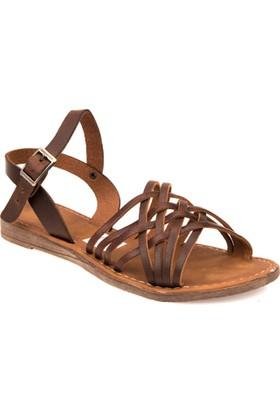 Ziya Kadın Hakiki Deri Sandalet 7164 802