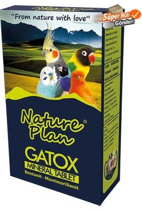 Nature Plan Gatox Gaga Taşı Mineralli