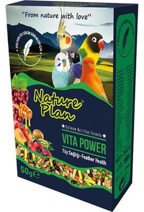 Nature Plan Vita Power Tüy Sağlığı 50 Gr