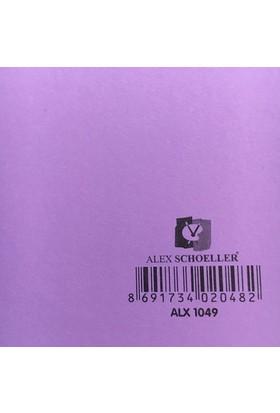 Alex Schoeller Kolej Fon Kartonu 25x35 cm Mor No: 49