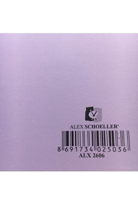 Alex Schoeller Kolej Fon Kartonu 25x35 cm Lila No: 06