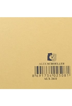 Alex Schoeller Kolej Fon Kartonu 25x35 cm Altın Sarı No: 11