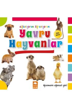 Eğleniyorum Öğreniyorum Serisi(Türkçe - İngilizce):Yavru Hayvanlar