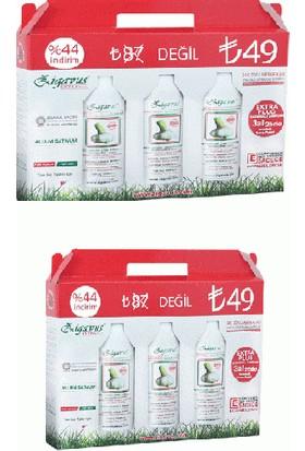 Zigavus Extra Plus 3Lü Paket 250 Ml = X2