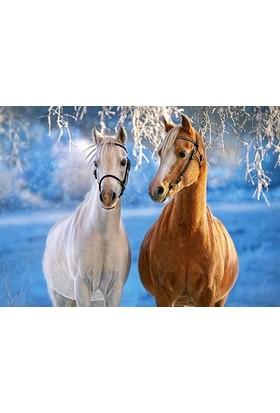 Castorland 260 Parça Puzzle The Winter Horses