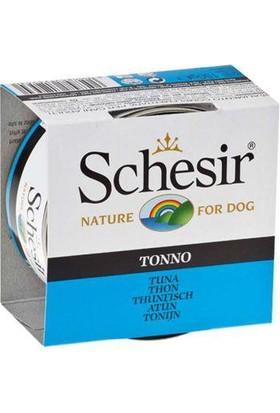 Schesir Ton Balıklı Köpek Konservesi 150 Gr