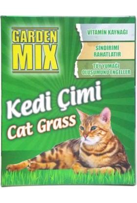 Patiland Garden Mix Kedi Çimi Büyük