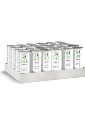 Aspire Elma & Acai Aromalı Gazlı İçecek 24'lü