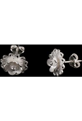 Akyüz Gümüş Papatya Modeli Telkari Gümüş Küpe Kpt072