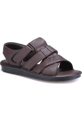 Flexall 104 M 1626 Kahverengi Erkek Sandalet