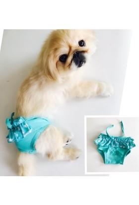 Kemique Fırfırlı Yeşil Kemique'S Secret Köpek İç Çamaşırı Regl Külot Don