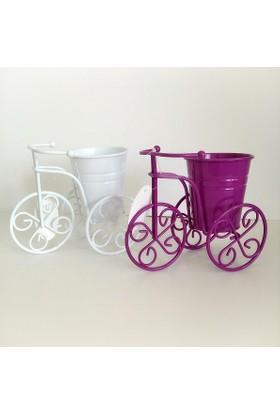 Hdm Bisiklet Saksı Ferforje Dekoratif Galvaniz 2 Adet