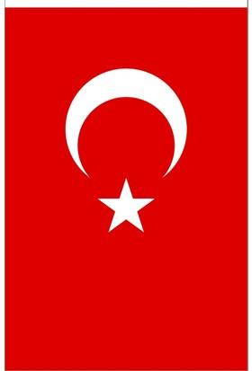 Ulu Bayrak Türk Bayrağı 80X120 Cm
