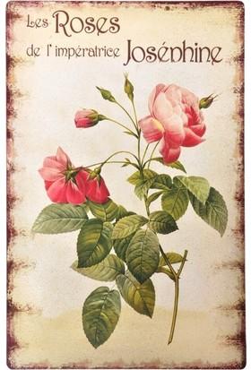 Decotown Roses Ahşap Pano 40*60 (18167)