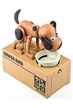 Pratik Choken Bako Para Yiyen Köpek Kumbara
