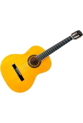Aria FST200N Klasik Gitar