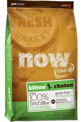 Now Fresh Tahılsız Kitten Chaton Cat Hindi + Somon + Ördekli 1.8 Kg