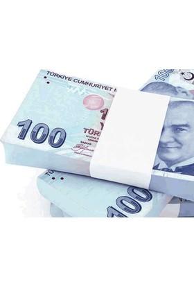 Wildlebend Şaka Lira - 100 Adet 100 Euro