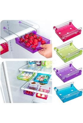 Wildlebend Buzdolabı İçi Geçmeli Organizer Kutu