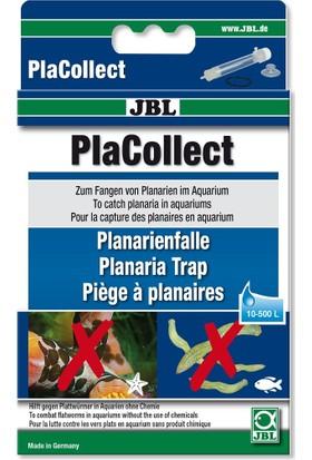Jbl Placollect Planarya Tuzağı