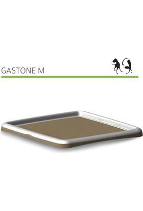 Mp Bergamo Köpek Çiş Eğitim Gastone M 59*59*4Cm