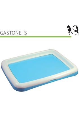 Mp Bergamo Köpek Çiş Eğitim Gastone S 48*38*4Cm