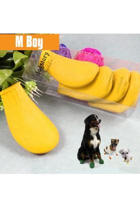 Dog Story Medium Sarı Galoş
