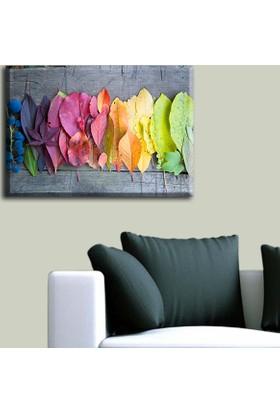 Tablo Art House Ahşap Zeminde Renkli Yapraklar Tek Parça Kanvas Tablo 30 x 40 cm