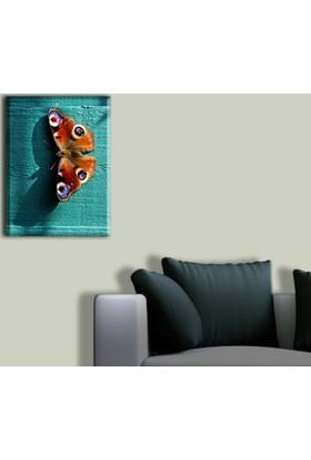 Tablo Art House Mavi Duvar Üzerinde Kelebek Tek Parça Kanvas Tablo 30 x 40 cm