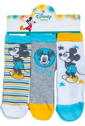 Mickey Mouse MC11322 Bebek 3'lü Soket Çorap
