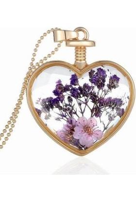Chavin Yaşayan Kalp Kristal Cam Kurutulmuş Çiçek Bayan Kolye Dr41
