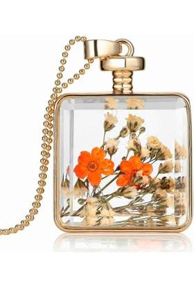 Chavin Yaşayan Kristal Cam Kurutulmuş Çiçek Bayan Kolye Dr44
