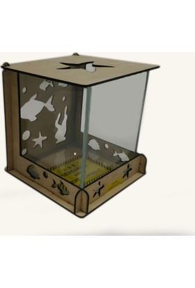 H&B Desıgn Masa Fanus Mini Akvaryum 16X16X16 Cm