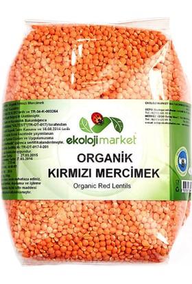 Ekoloji Market Organik Kırmızı Mercimek 1Kg