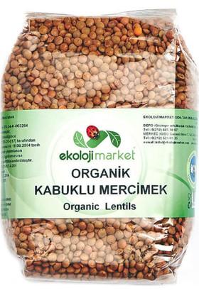 Ekoloji Market Organik Kabuklu Mercimek 500 Gr