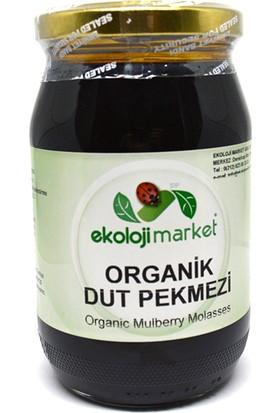 Ekoloji Market Organik Dut Pekmezi 450 Gr