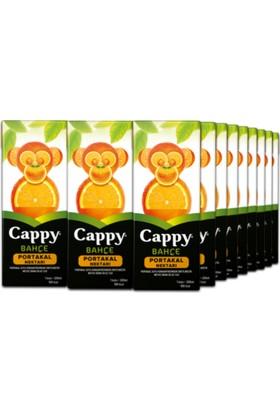 Cappy Portakal Nektarı 200 ml Tetra 27'li