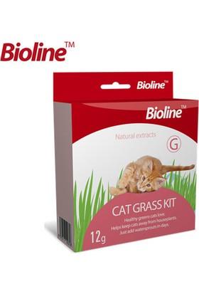 Bioline Kedi Çim Seti