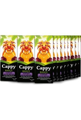 Cappy Karışık 200ml 27'li