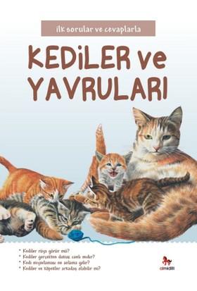 İlk Sorular Ve Cevaplarla :Kediler Ve Yavruları