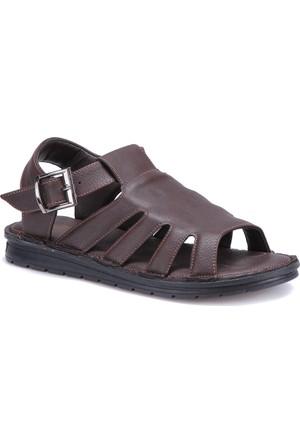 Flexall 111 M 1626 Kahverengi Erkek Sandalet