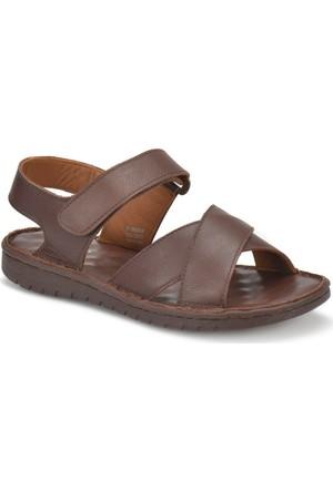 Polaris 71.156860.M Kahverengi Erkek Deri Klasik Sandalet