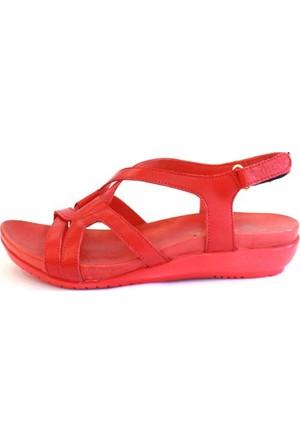 Shop And Shoes 121-206 Kadın Sandalet Kırmızı
