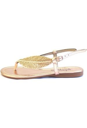 Shop And Shoes 190-084 Kadın Ayakkabı Rose