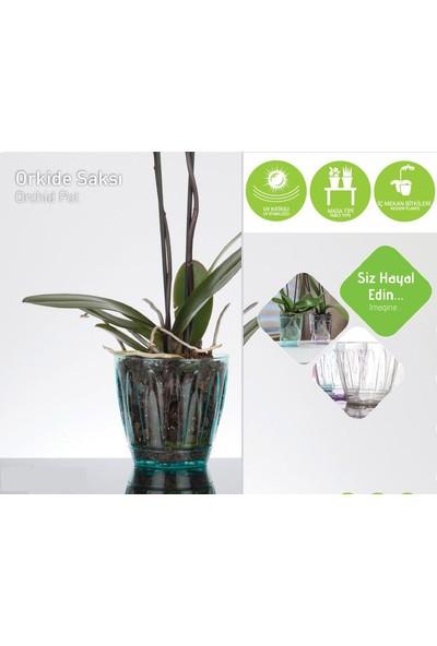 Homecare Şeffaf Orkide Saksı 422710