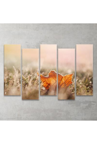 Plustablo Sonbahar 5 Parça MDF Tablo 100x65 cm