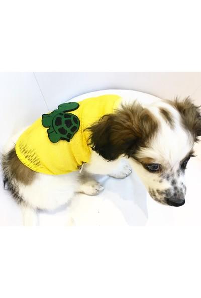 Dogi & Dog Turtle File Köpek Atleti-Köpek Elbisesi-Köpek Kiyafeti-Kedi Kiyafeti